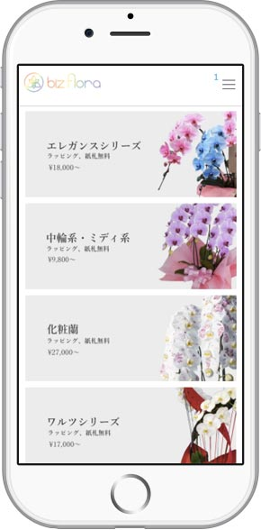 iPhone-biz