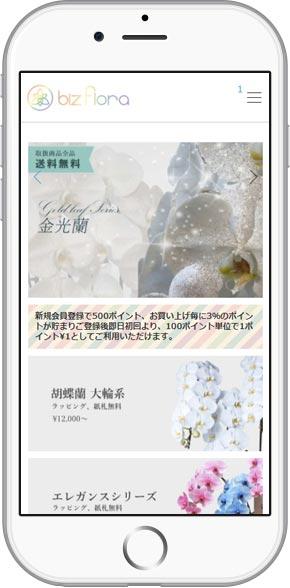 iPhone-biz1